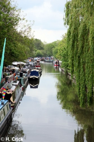 Festival Trade and Boat Bookings